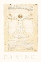 The Vitruvian Man Fine-Art Print