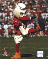 Sebastian -The Mascot of  University of Miami Hurricanes, 2003 Fine-Art Print