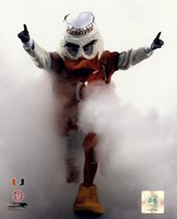 Sebastian the University of Miami Hurricanes mascot 2006 Fine-Art Print