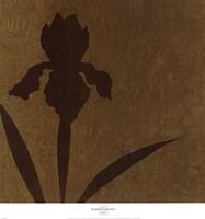 Iris (Metallic) Fine-Art Print