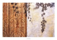 Rusty Door and Grapevine Fine-Art Print