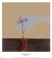 Zen Blossom I Fine-Art Print