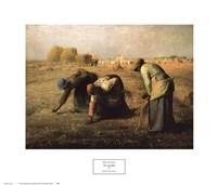 Gleaners 1857 Fine-Art Print