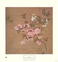 Cherry Blossoms and Wild Roses Fine-Art Print