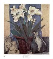 Amaryllis & Cat Fine-Art Print