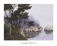 Whaler's Cove Morning Fog Fine-Art Print