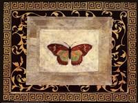 Winged Ornament II Fine-Art Print