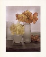 Frosted Glass Vases IV Fine-Art Print