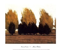 Near Vado Fine-Art Print