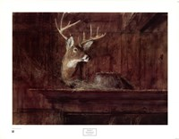 Eleven Pointer, 1985 Fine-Art Print