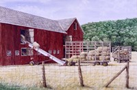 Hay Day Fine-Art Print
