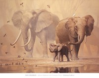 African Elephants and Namaqua Doves Fine-Art Print
