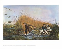 Wild Duck Shooting Fine-Art Print