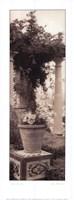 Jardin Botanico Fine-Art Print