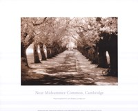 Near Midsummer Common, Cambridge Fine-Art Print