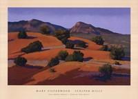 Juniper Hills Fine-Art Print