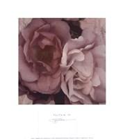 Parfum IV Fine-Art Print