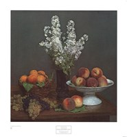 Bouquet de Julienne et Fruits Fine-Art Print