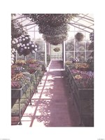 Greenhouse Effect Fine-Art Print