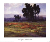 Wild Poppies Fine-Art Print