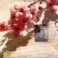 Vintage Letters and Cherry Blossoms Fine-Art Print