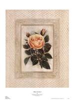 Yellow Tea Rose I Fine-Art Print