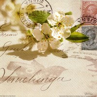 Vintage Letter and Apple Blossoms Fine-Art Print