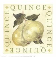 Quince Fine-Art Print