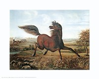 Neigh of an Iron Horse Fine-Art Print