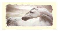 Appaloosa Fine-Art Print
