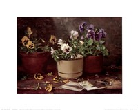 Pansies in Terra Cotta Fine-Art Print