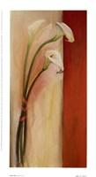 Calla Tres Fine-Art Print