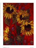 Sunflowers II Fine-Art Print
