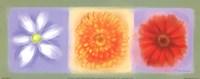 3 Flower Panel Fine-Art Print