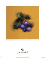 Blueberries Fine-Art Print