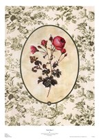 Toile Rose I Fine-Art Print