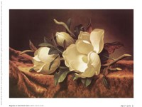 Magnolia On Gold Velvet Cloth Fine-Art Print