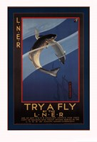 Trout - try a fly Fine-Art Print
