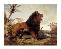 Lion in the Jungle Fine-Art Print