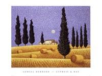 Cypress and Hay Fine-Art Print