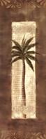 Scroll Palm II Fine-Art Print