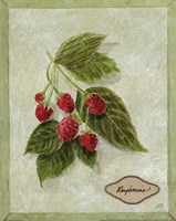 Bookplate Raspberries Fine-Art Print