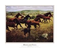 Mares Foals Fine-Art Print