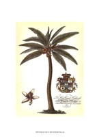 Palm and Crest I Fine-Art Print