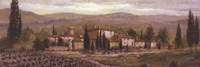 Uzzano Pano Fine-Art Print