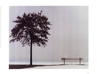 Bench: Oyster Bay, NY Fine-Art Print