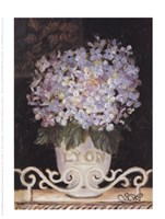 Hydrangeas Of Lyon Fine-Art Print