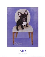 Lulu The French Bulldog Fine-Art Print