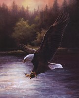 Eagle Prey Fine-Art Print