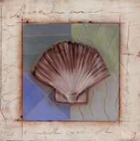 Shell Accents IV Fine-Art Print